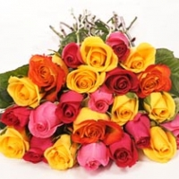 24 Coloured Rose Bouquet