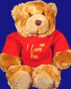 2 ft teddy w/i love you t shirt