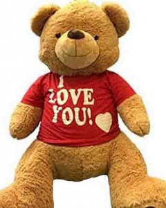 3ft brown teddy w/i love you T-shirt